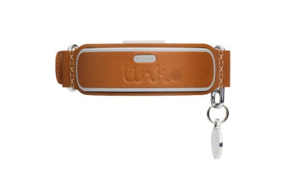 link collar 4