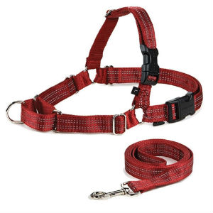petsafe harness