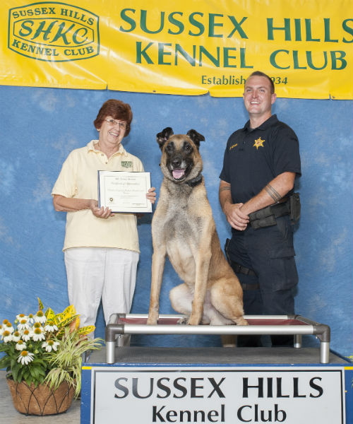 sussex hill k-9