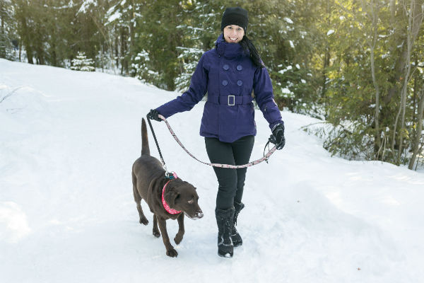 Tis The Season Avoid The Big Freeze In Your Dog