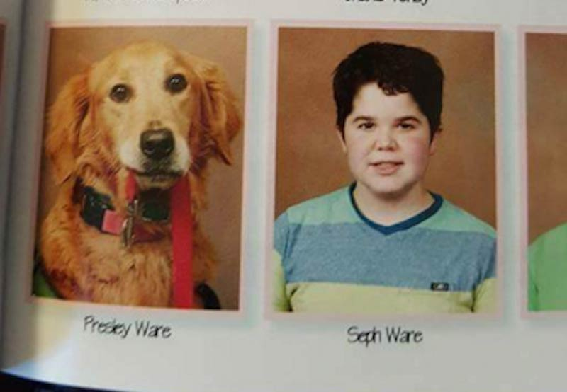 Service dog in yearbook