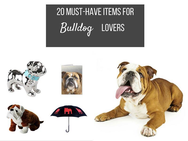 20 bulldog lover must haves