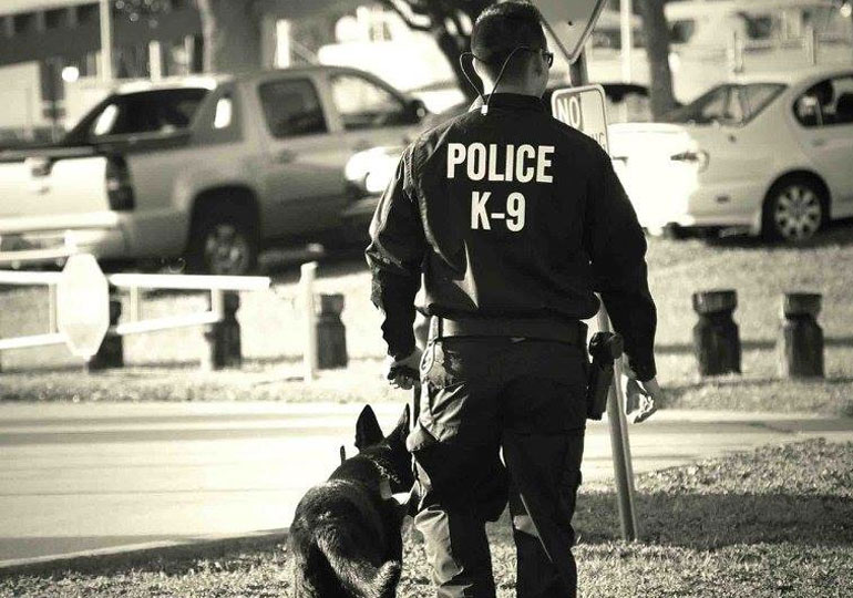 K-9 Handler Writes Touching Tribute to His Partner Before Saying Goodbye