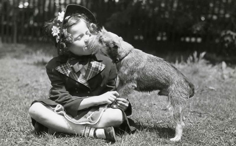 children and terriers header