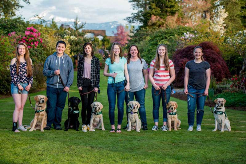 Meet The Student Puppy Sitters Helping Raise Future Service Dogs