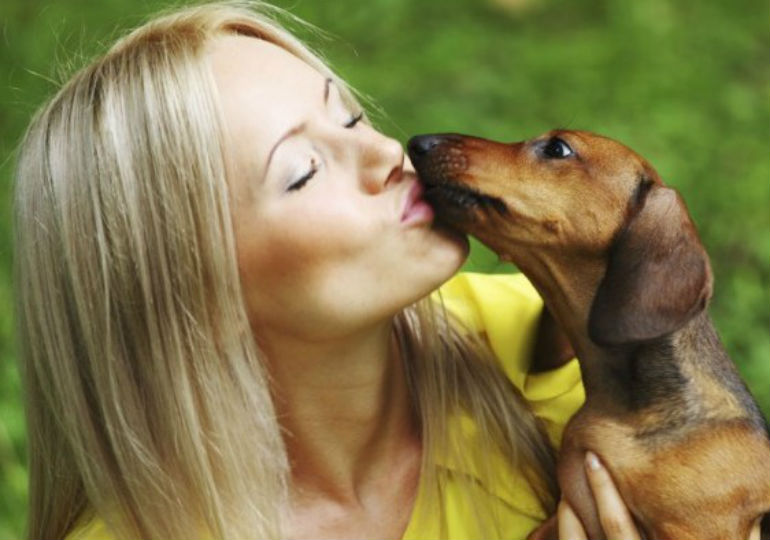 Can a Dog's Lick Make You Sick?