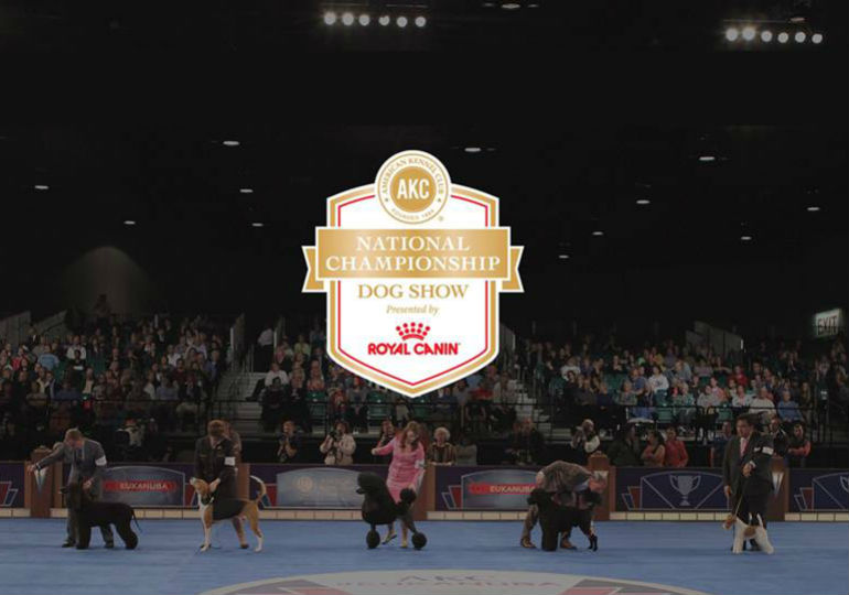 AKC National Championship Presented by Royal Canin Draws Record Entry Numbers