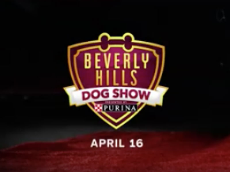 Dates And Network American Kennel Club Dog Show
