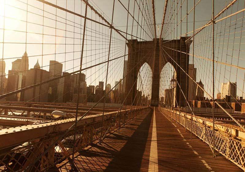 Limo Driver Saves Dog On Brooklyn Bridge