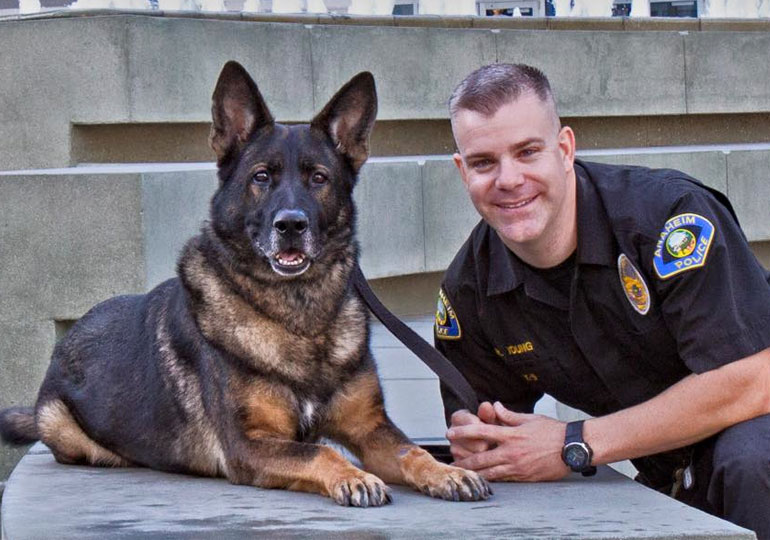 SWAT K-9 Dies 2 Years After Being Shot In Line of Duty