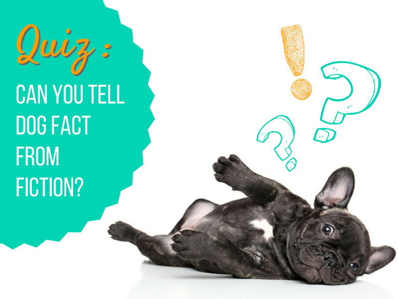 dog fact or fiction