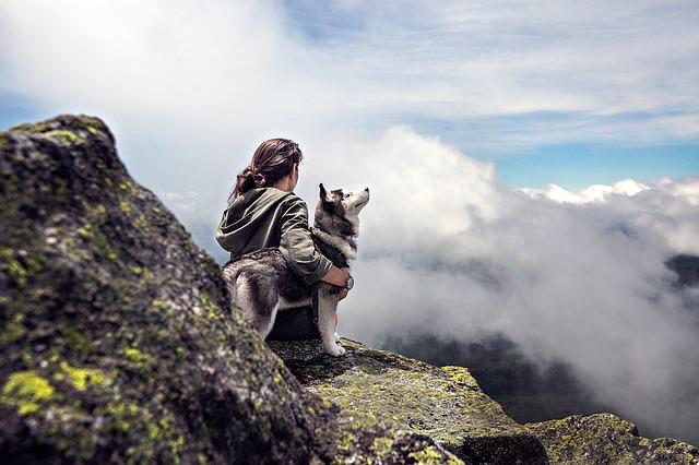 hiking partners header