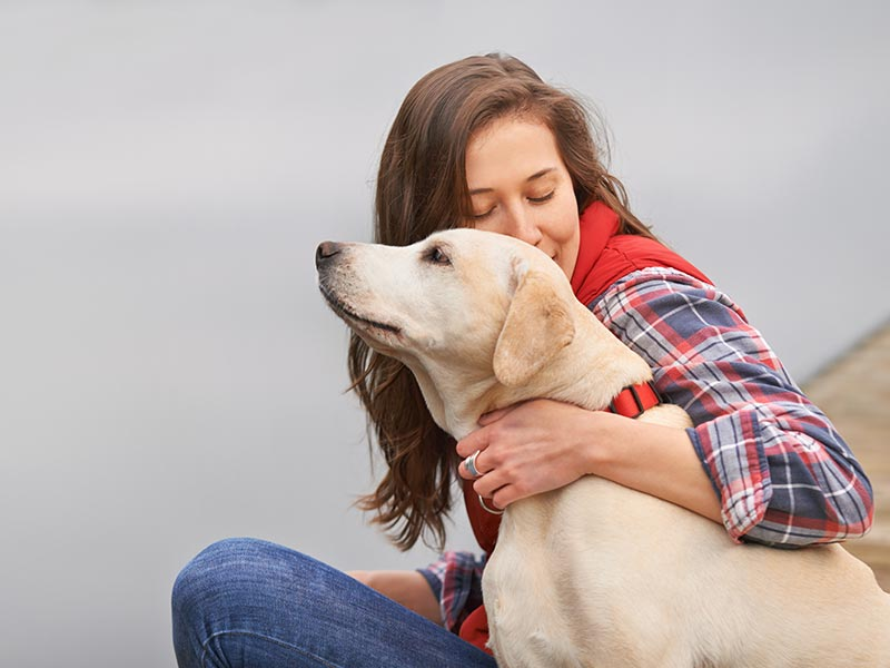 Dogs May Melt Your Heart, but They Also Make It Healthier
