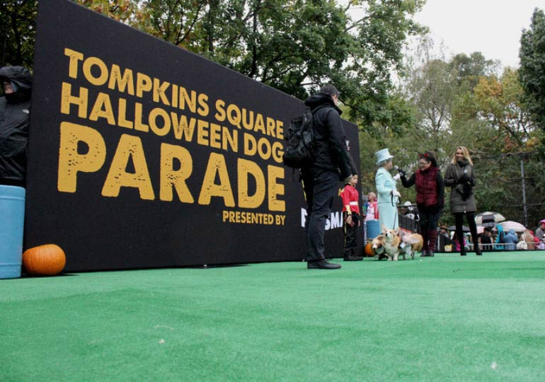 It Was a Doggone Good Time at the Tompkins Square Halloween Dog Parade