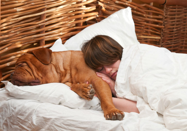 woman_sleeping_with_dog_hero