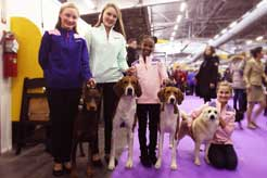 Team Joy Brings Special Persona to National Dog Show