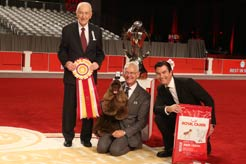 Striker the Cocker Spaniel Wins 2017 AKC National Championship Presented By Royal Canin