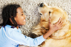 Dogs Help Reduce Stress in Children, Study Shows