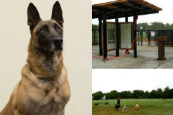 Kansas Dog Park Renamed to Honor Fallen K-9