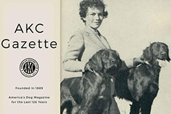 The AKC Gazette: Celebrating the Sport of Dogs - thumbnail