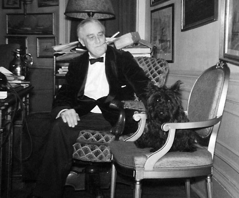 Franklin Delano Roosevelt with Fala the Scottish Terrier
