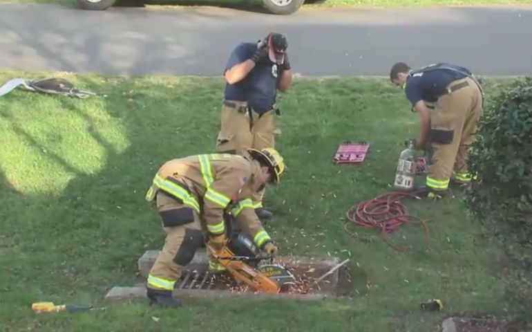 Dog Missing For Over A Year Found Stuck In Storm Drain