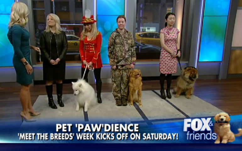 AKC's Meet The Breeds Featured On