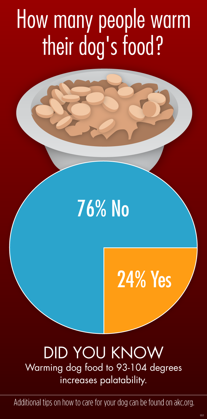 How Many People Warm Their Dog\'s Food? – American Kennel Club