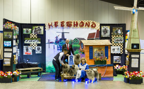 Keeshond booth