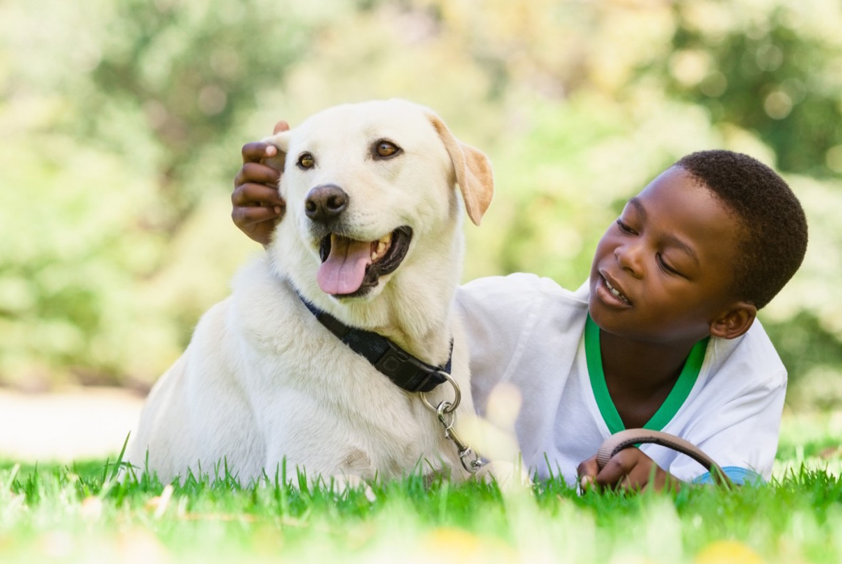 Boy with dog in the park - dog tips and advice for kids