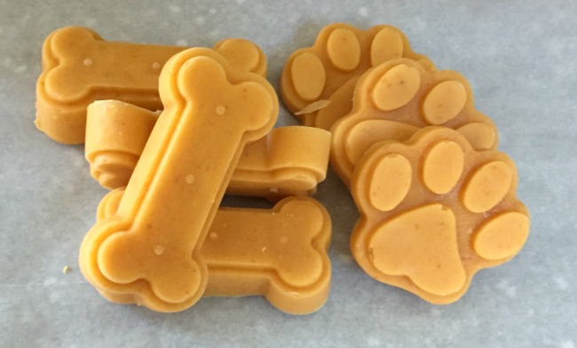 frozen pumpkin dog treats kids can make