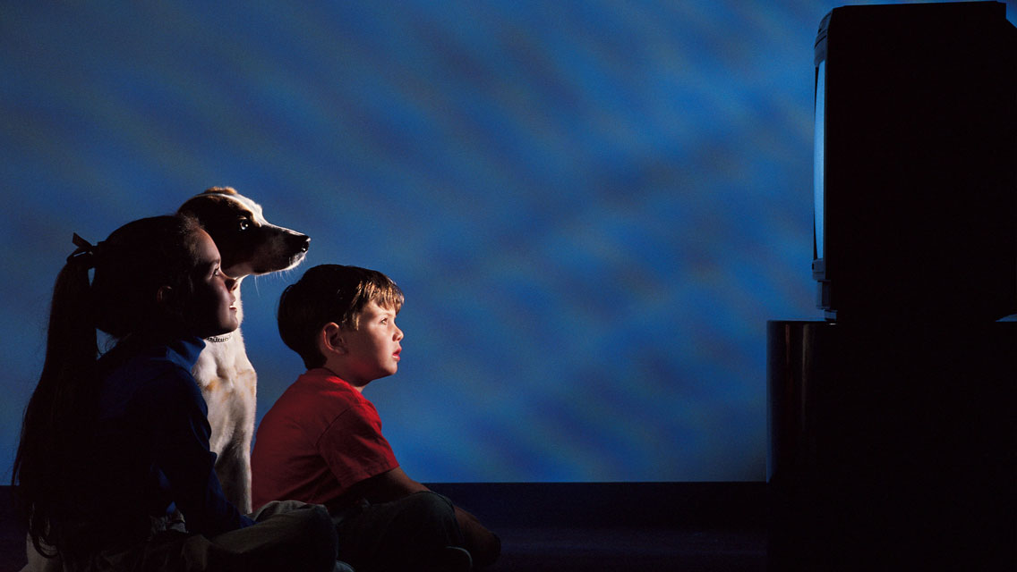 First-Ever Dog Film Festival Coming to NYC this Fall