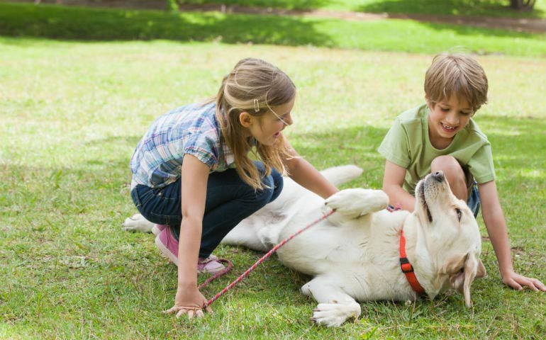 Study Shows Having A Dog May Reduce Anxiety In Children