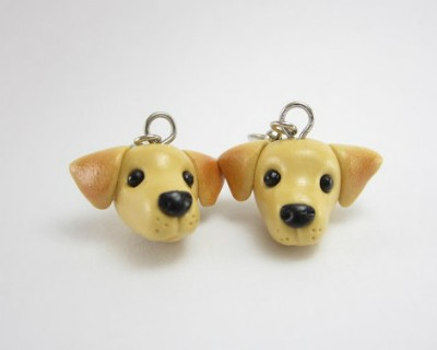 Lab earrings