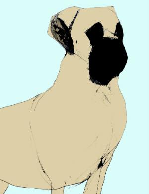 mastiff illustration