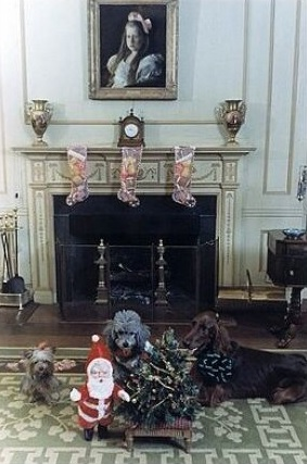 Richard Nixon's dogs in the White House