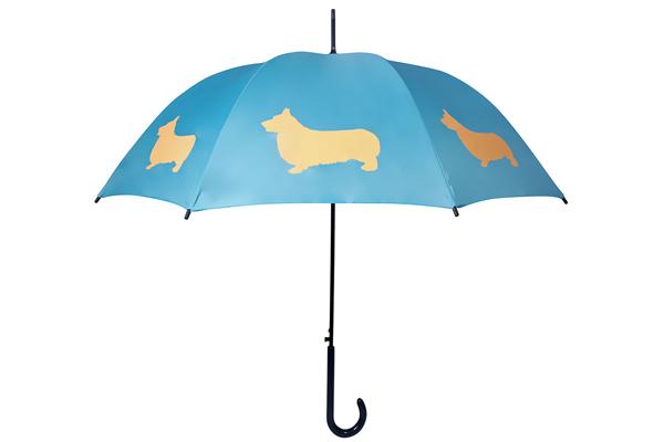 san francisco umbrella company