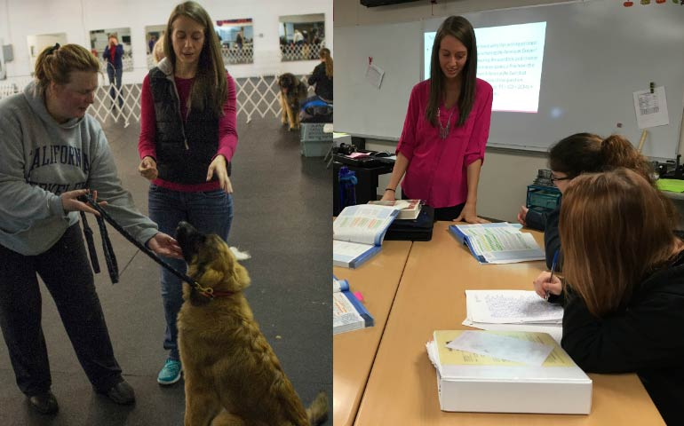 Training Dogs And Teaching Children Take A Page From The Same Textbook