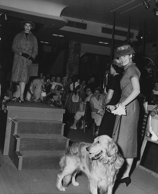 Brooklyn Kennel Club fashionable vintage women and dogs