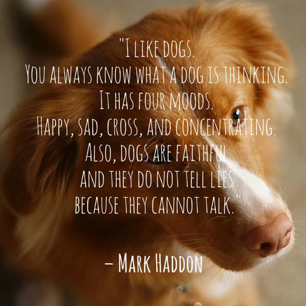 Cita del perro Haddon