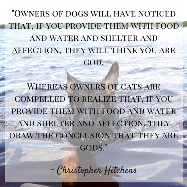 Cita del perro de Hitchens