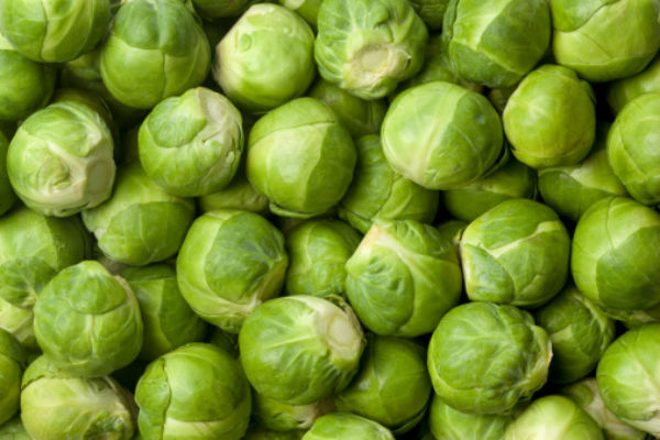 brussel_sprouts_body_image