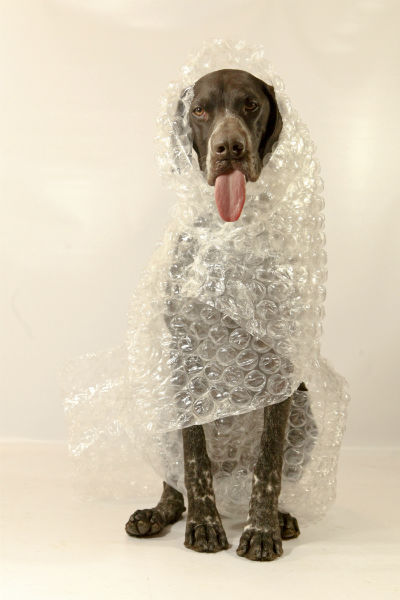 gsp bubble wrap