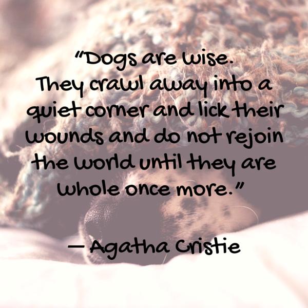 Cita de Cristie Dog