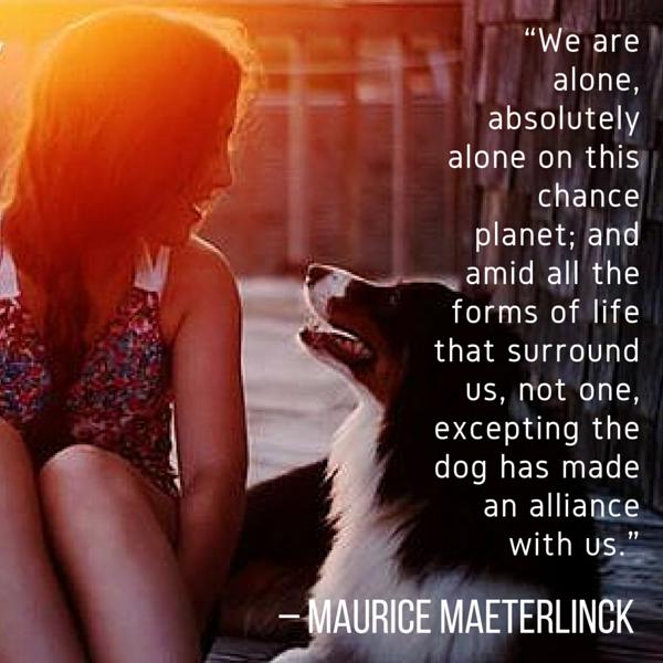 Citas del perro Maeterilinck