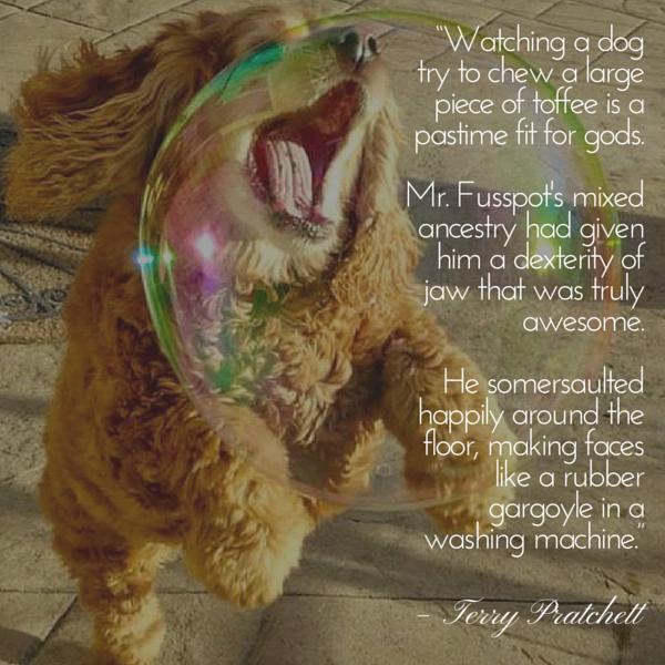Cita del perro Pratchett