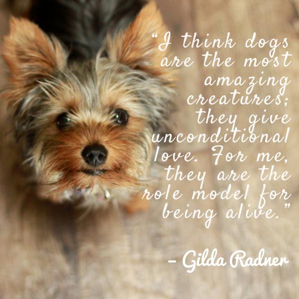 Cita del perro Radner